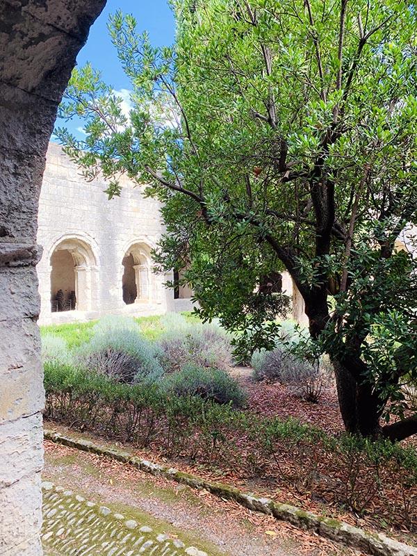 Abbaye cistercienne Silvacane à la Roque d'Anthéron